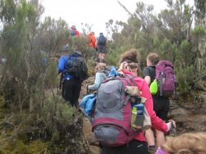 Steep trail up from Machame Camp towards Shira Camp